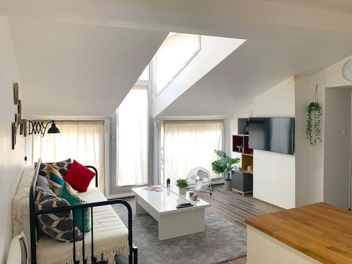 Apartment with bedroom and terrace Toulouse center
