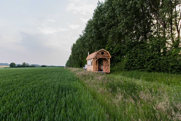 Wildernest Tiny House - Chaumont-Gistoux - Stuga