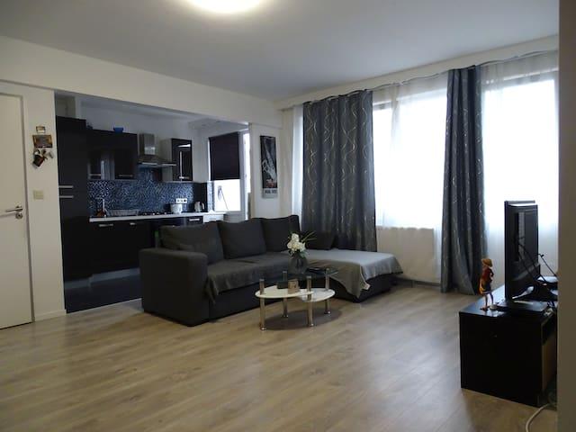 Appartement récemment rénové, lumineux et spacieux