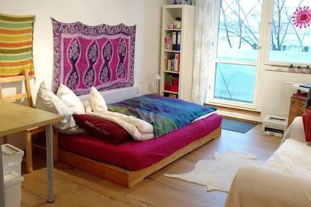 Sonnige Einzimmerwohnung in Eutritzsch - Leipzig - Apartment