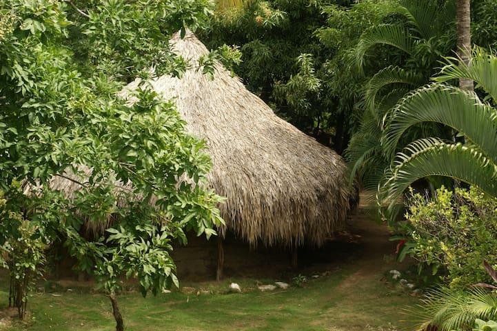 Gambhira Eco Yoga Aldea - Santa Marta - Mökki