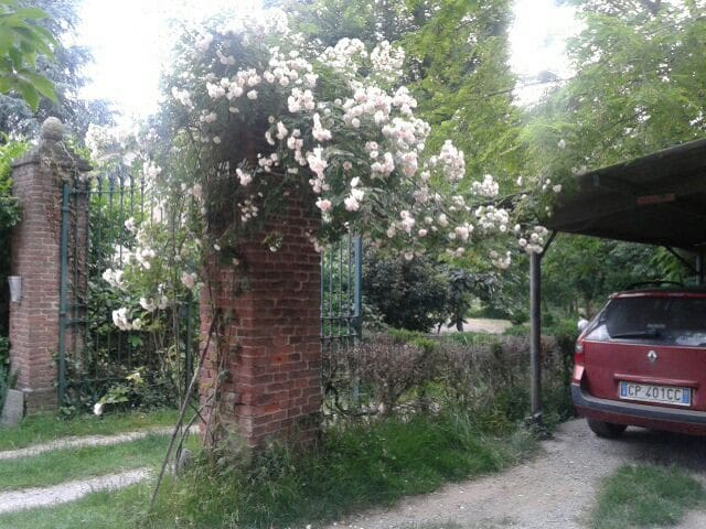 Dormire nel verde, a due passi dalla città - Castagneto po