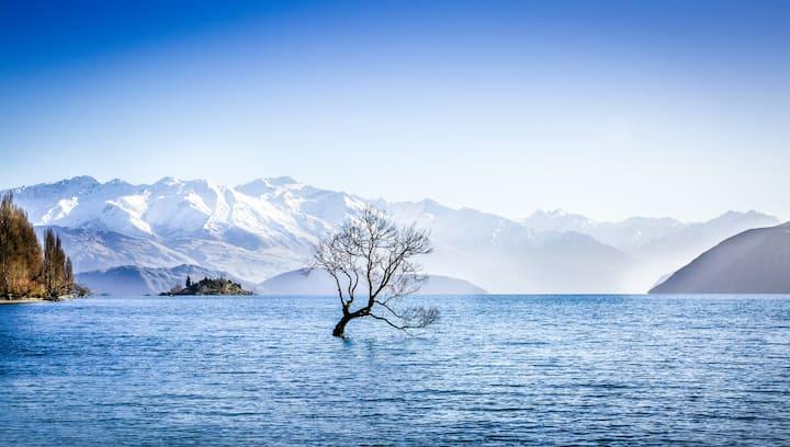 The Wanaka Tree House - Lake Front