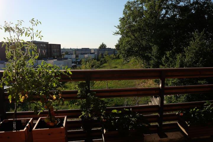 T4 avec terrasse à 10 min du métro Balma-Gramont - Balma - Apartment
