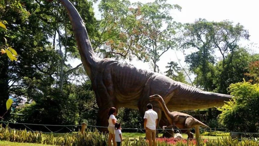 Dino Park  a 7 minutos