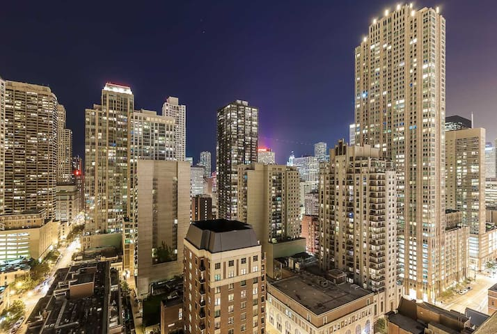 Magnificent Mile / 2 BR in downtown Chicago 501