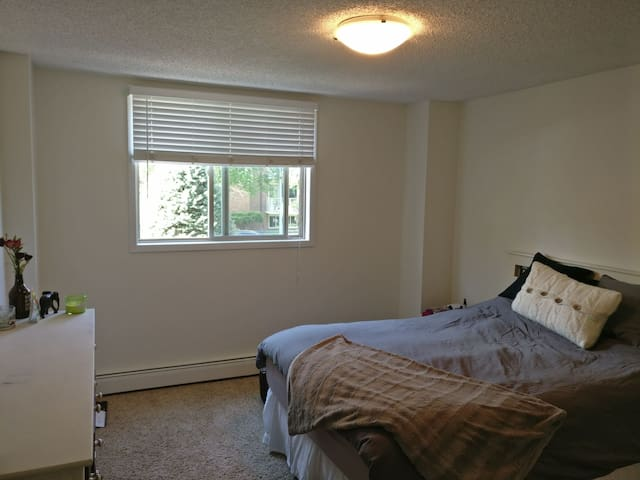 Bright 1 Bedroom Private Unit in Vibrant Sunnyside