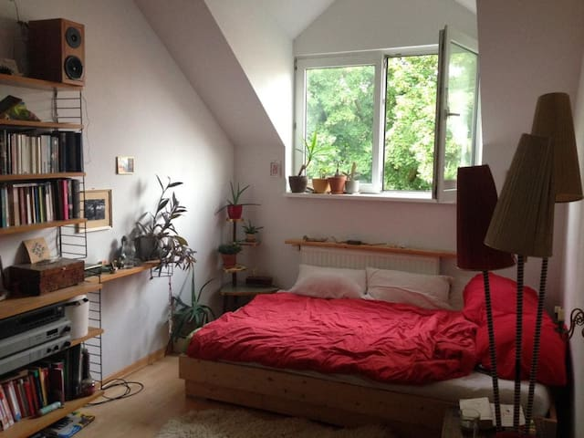 Beautiful Room in Xberg