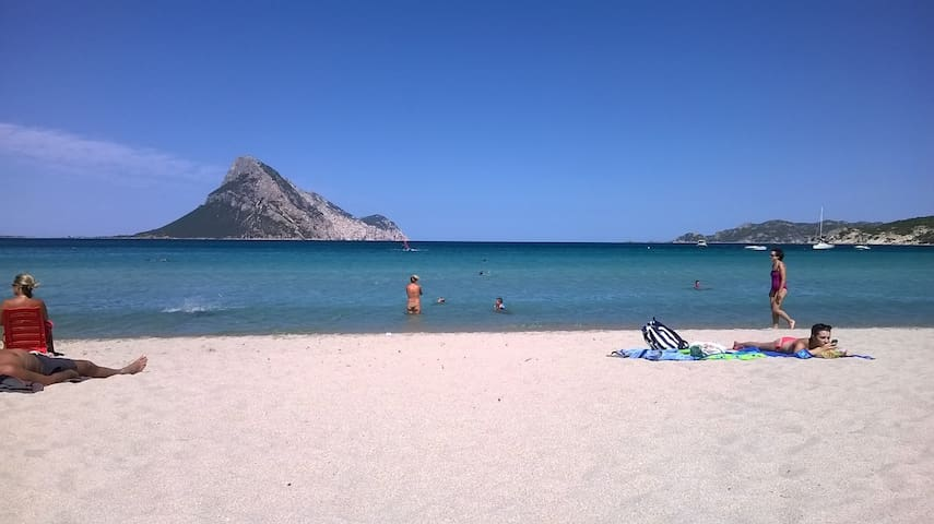 Rocks, green, sea and Tavolara - Monte Petrosu - Casa