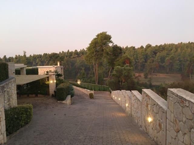Lux Villa in Elani, Khalkidhiki