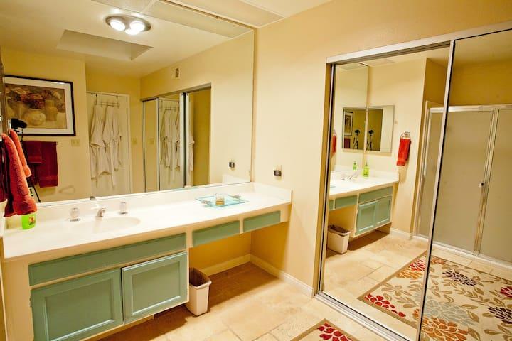 Large master bathroom with skylight