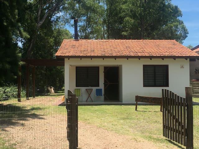 Beau Geste - Solís - House