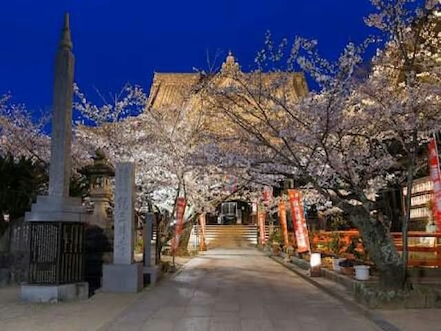 35 和歌山でスローライフを満喫!紀三井寺、黒潮市場魅力がいっぱい。 - Wakayama-shi - Apartment