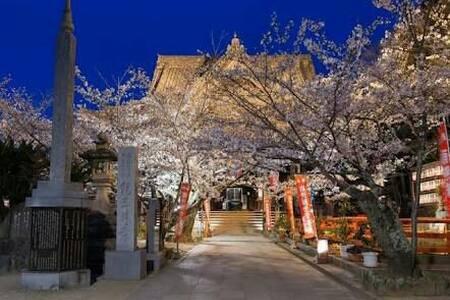 35 和歌山でスローライフを満喫!紀三井寺、黒潮市場魅力がいっぱい。 - Wakayama-shi - 公寓
