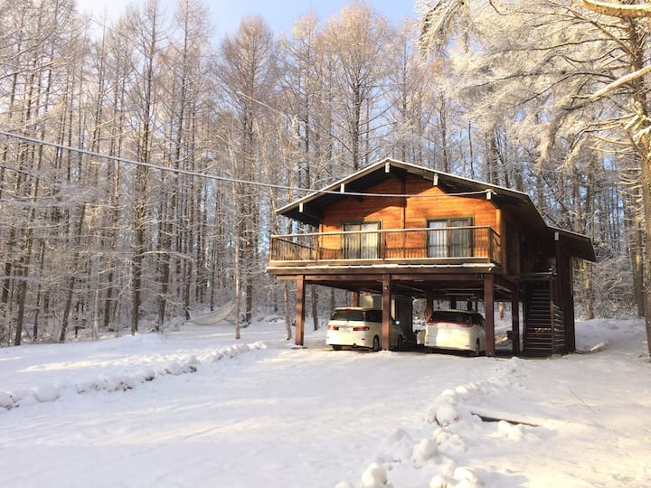 Modern Spacious Ski Chalet + 4WD Car & Internet!