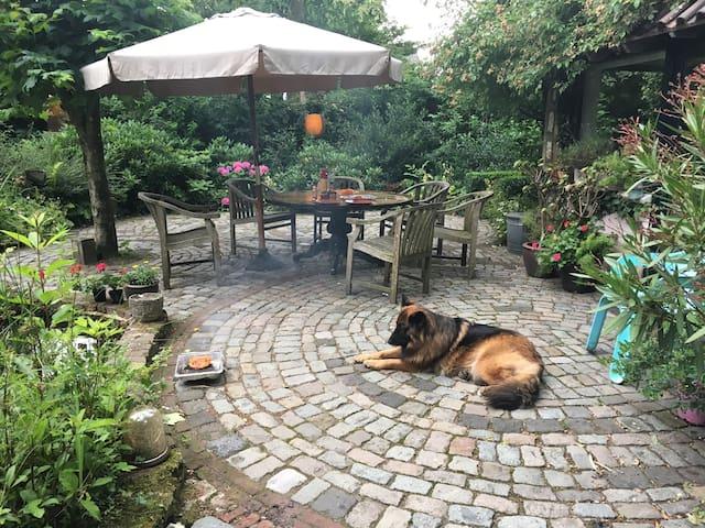 Little romantic garden house in a beautiful garden - Hengelo - Lägenhet