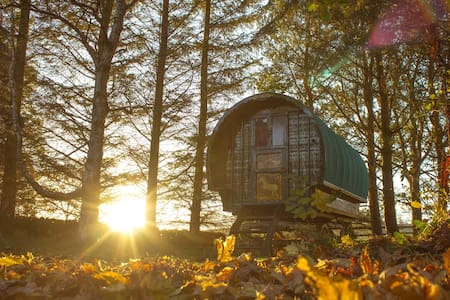 Magical Retreat in a Gypsy Caravan with Cottage - Bowden
