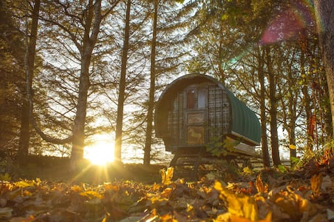 Magical Retreat in a Gypsy Caravan with Cottage