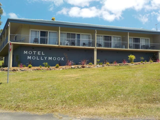 Family ocean view room - Mollymook - Departamento