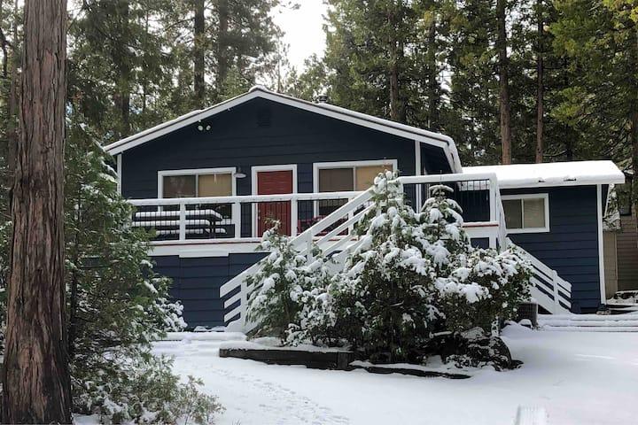 Charming & Cozy East Village Cabin
