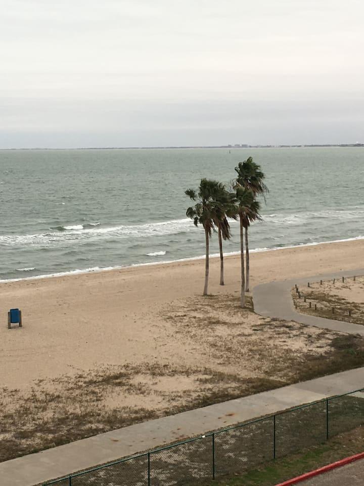 OASIS ON THE BEACH!