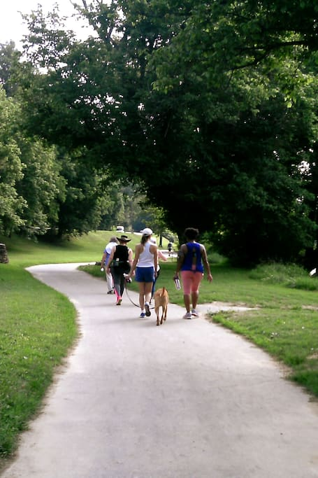 Stroll Asheville parks with your dog!
