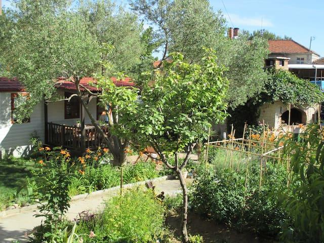 Pod maslinom,mobile house