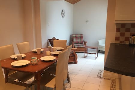 Bright, spacious house in Galway city - House