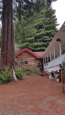 Tiny Home, Anderson Valley Redwoods - Navarro  - Cabin