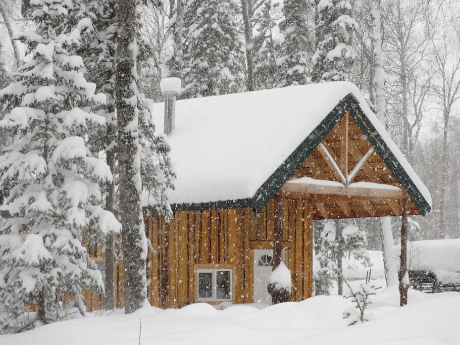 Winter of 2012, lots of snow!