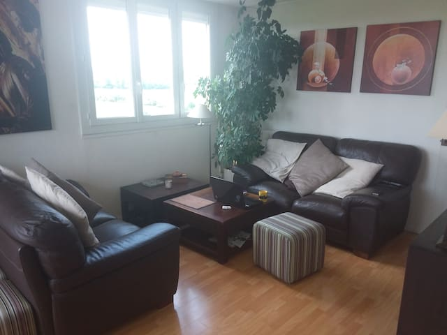 2 BR Appartment in Chilly Mazarin
