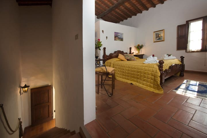 VACANZA E NATURA - Terranuova Bracciolini - Wohnung