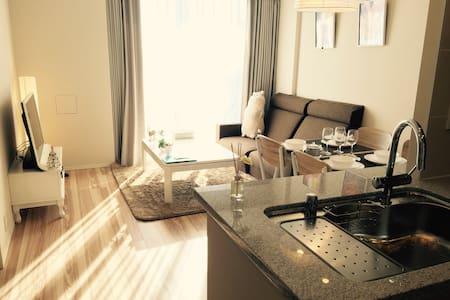 東京湾区高级两室公寓毗邻银座、台场购物便利 - Chūō-ku - Pis
