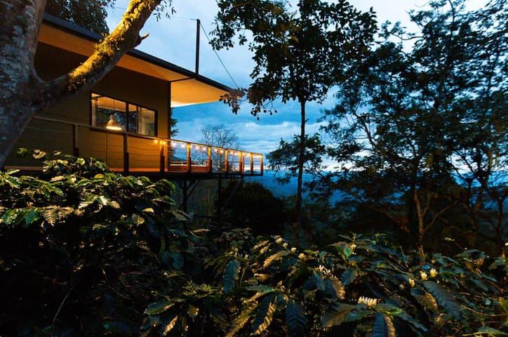 Selva Luxury Cabin  - San Francisco