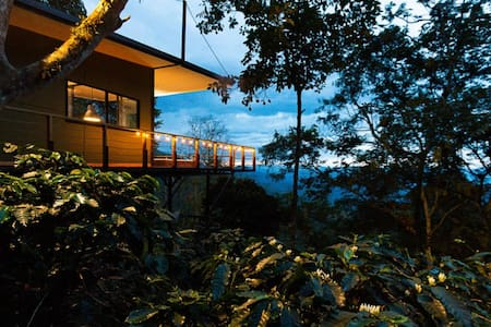 Selva Luxury Cabin  - San Francisco