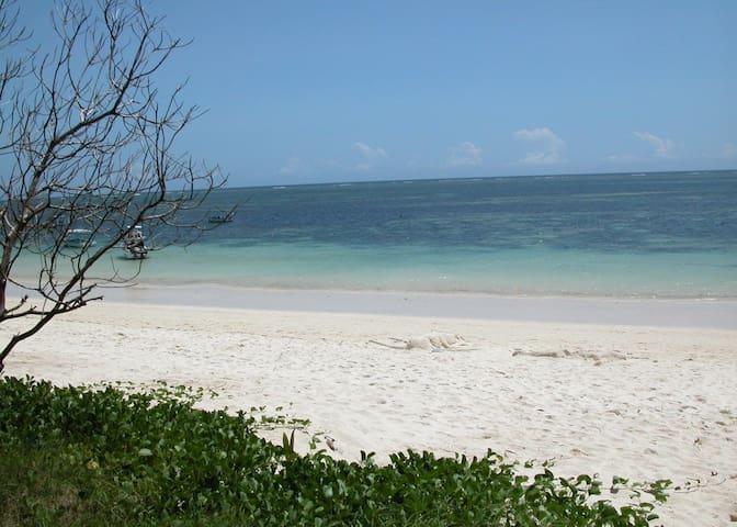 Fine sandy beach at the warm Indian ocean
