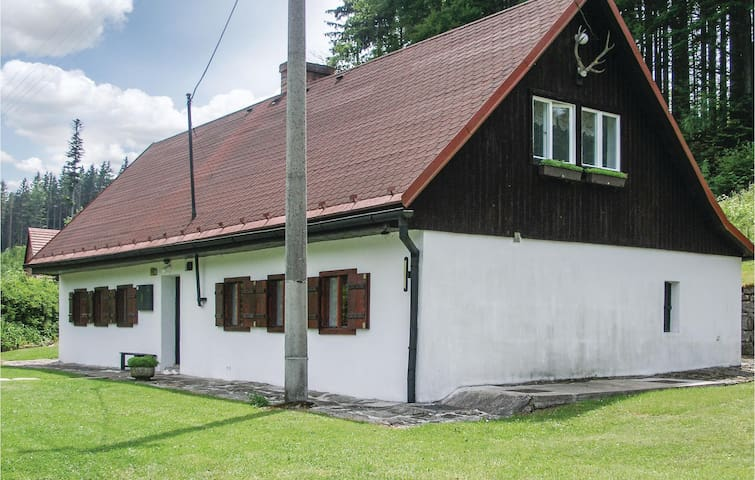 Holiday cottage with 2 bedrooms on 141m² in Radvanice v Cechach