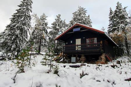 Tuva, 1.Drammen Speidergruppes hytte