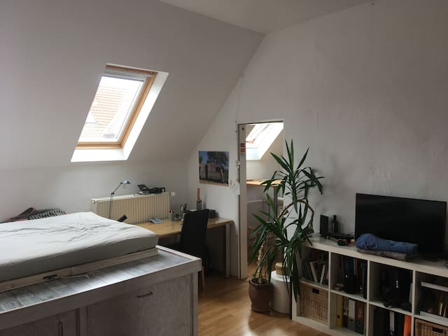 1 Zimmer Wohnung mit Blick auf die Dächer der List