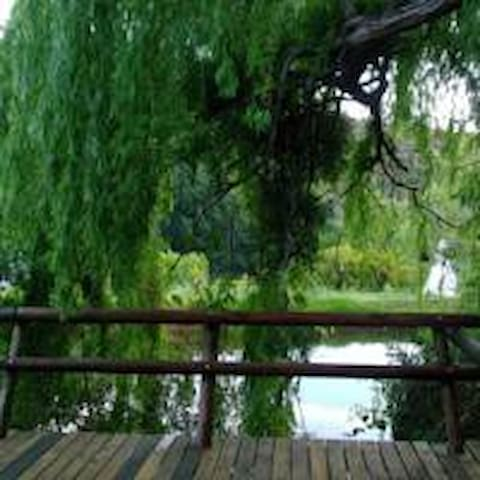 luxury riverfront mountain view family selfcater - Oudtshoorn - Cabin