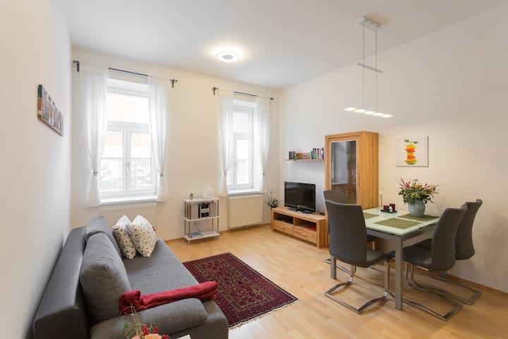 Topsanierte, ruhige 2 Zimmerwohnung - Wien - Flat