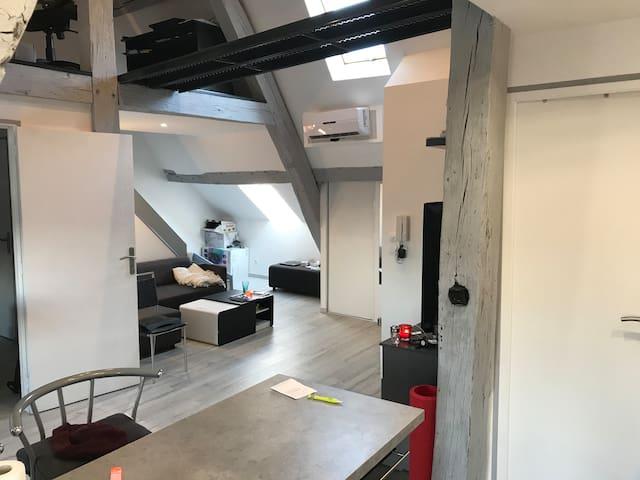 Appartement hyper centre (grande rue)