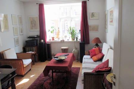 Cozy apartment City/Christianshavn - København