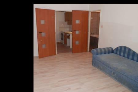 Praha forever - Praag - Appartement
