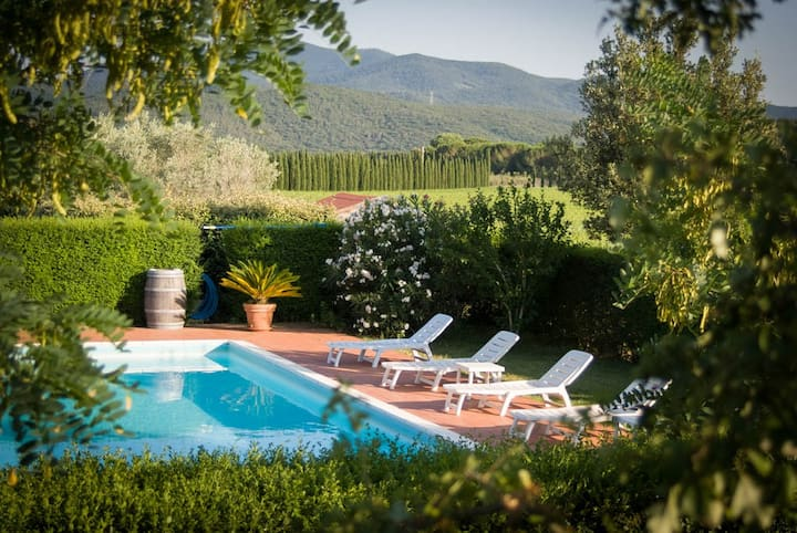 Winefarm in Tuscany with pool, ideal for groups.