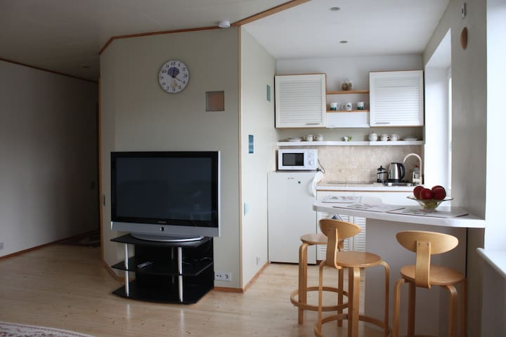 Haapsalu City-Center Apartment - Haapsalu - Apartamento