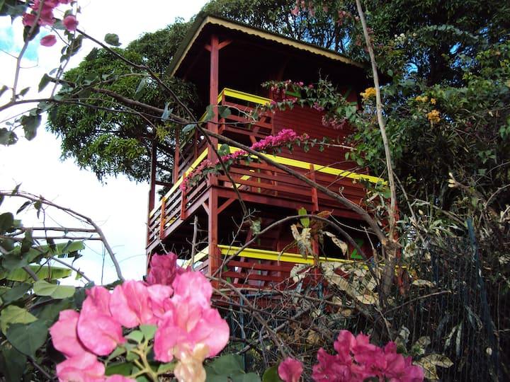 Guadeloupe-Paradisio Pitaya