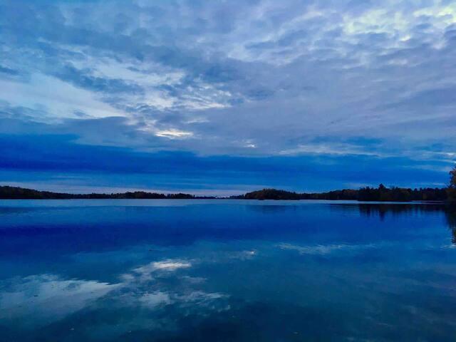 Gorgeous Dog Lake