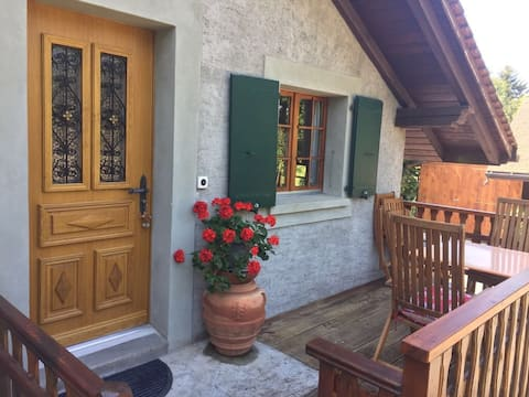Amazing flat with WiFi, parking & Terrace in Forel