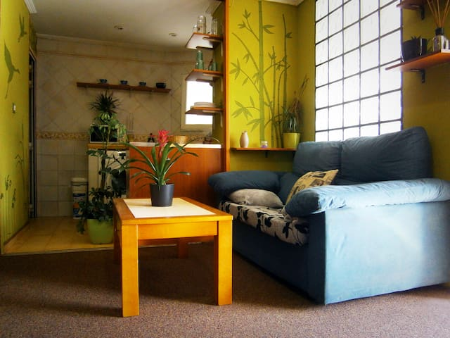 Loft zen cheerful, bright and quiet - Vitoria-Gasteiz - Loft